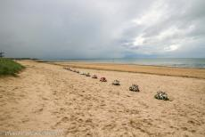 75th anniversary of D-Day - Classic Car Road Trip Normandy, the 75th anniversary of D-Day: On 6 June 2019, it was exactly 75 years ago that D-Day took place, the...