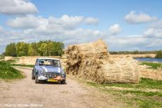 Stuyvesant Tour - Stuyvesant Mini Tour 2017: Driving through the Weerribben-Wieden in our lavender blue coloured Mini Authi. The Weerribben-Wieden is a...