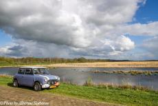 Stuyvesant Tour - Stuyvesant Tour 2017: Our Mini Authi in the former peatlands of the National Park Weerribben-Wieden in the Netherlands, the...